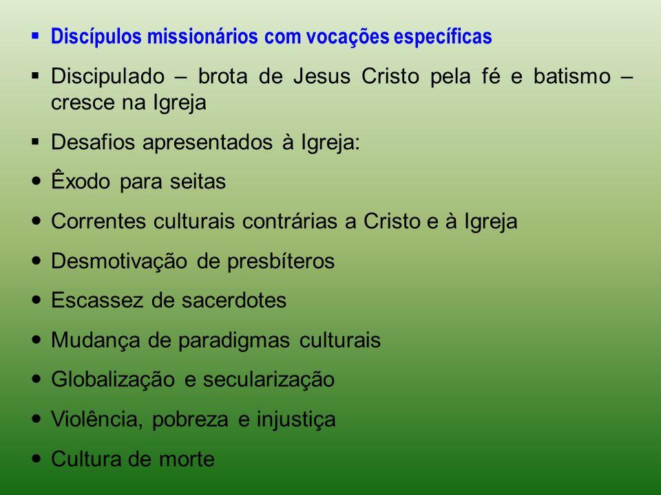 Discípulos missionários com vocações específicas Discipulado – brota de Jesus Cristo pela fé e batismo – cresce na Igreja Desafios apresentados à Igre