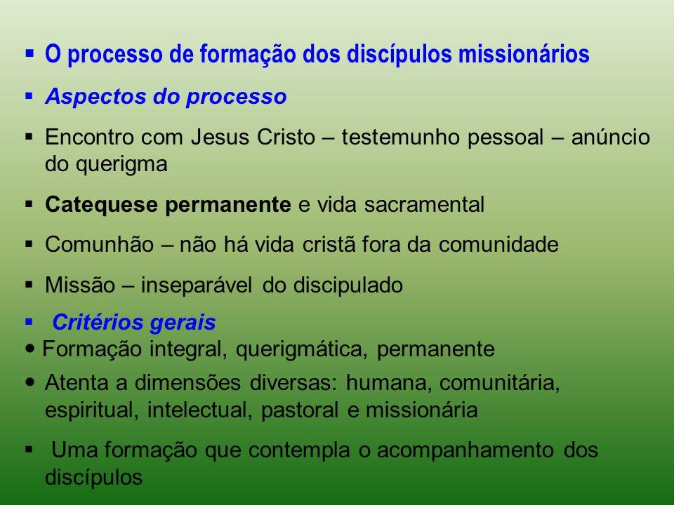 O processo de formação dos discípulos missionários Aspectos do processo Encontro com Jesus Cristo – testemunho pessoal – anúncio do querigma Catequese
