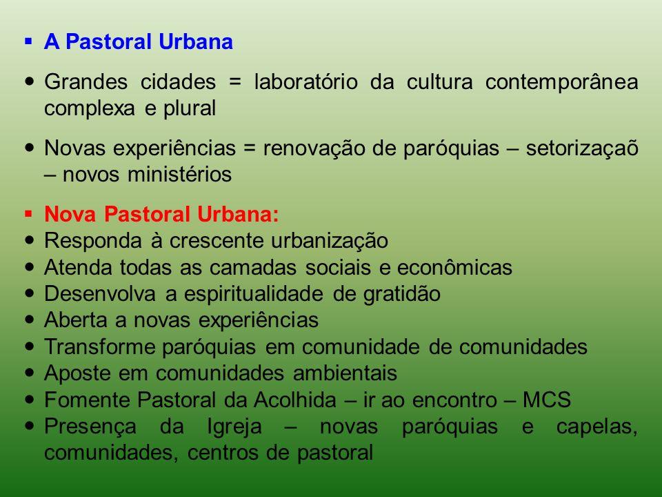 A Pastoral Urbana Grandes cidades = laboratório da cultura contemporânea complexa e plural Novas experiências = renovação de paróquias – setorizaçaõ –