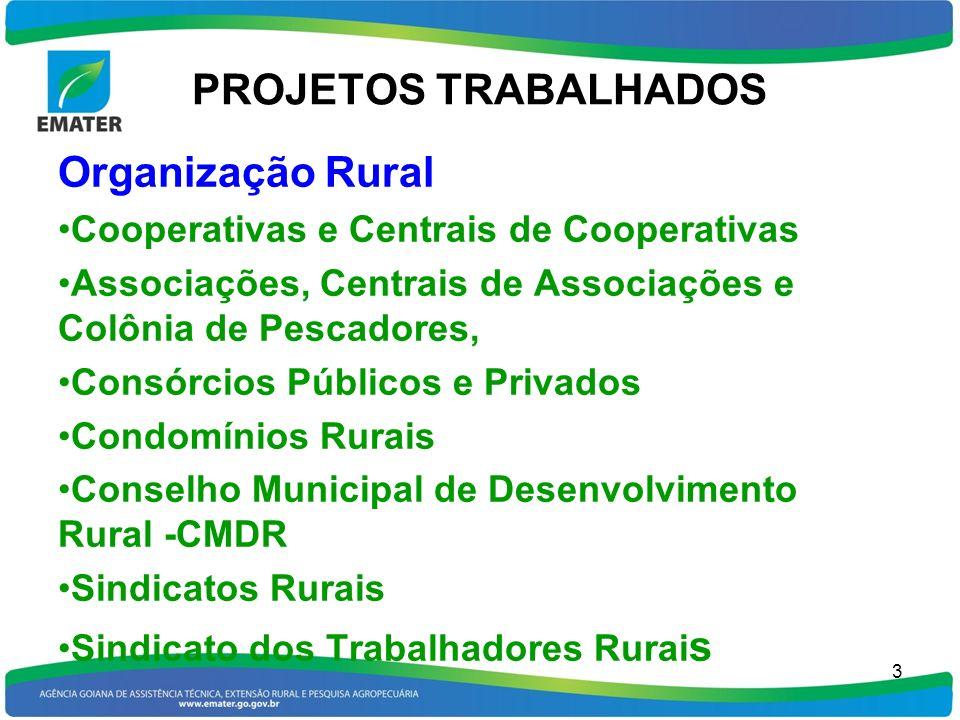 PROJETOS TRABALHADOS Organização Rural Cooperativas e Centrais de Cooperativas Associações, Centrais de Associações e Colônia de Pescadores, Consórcio