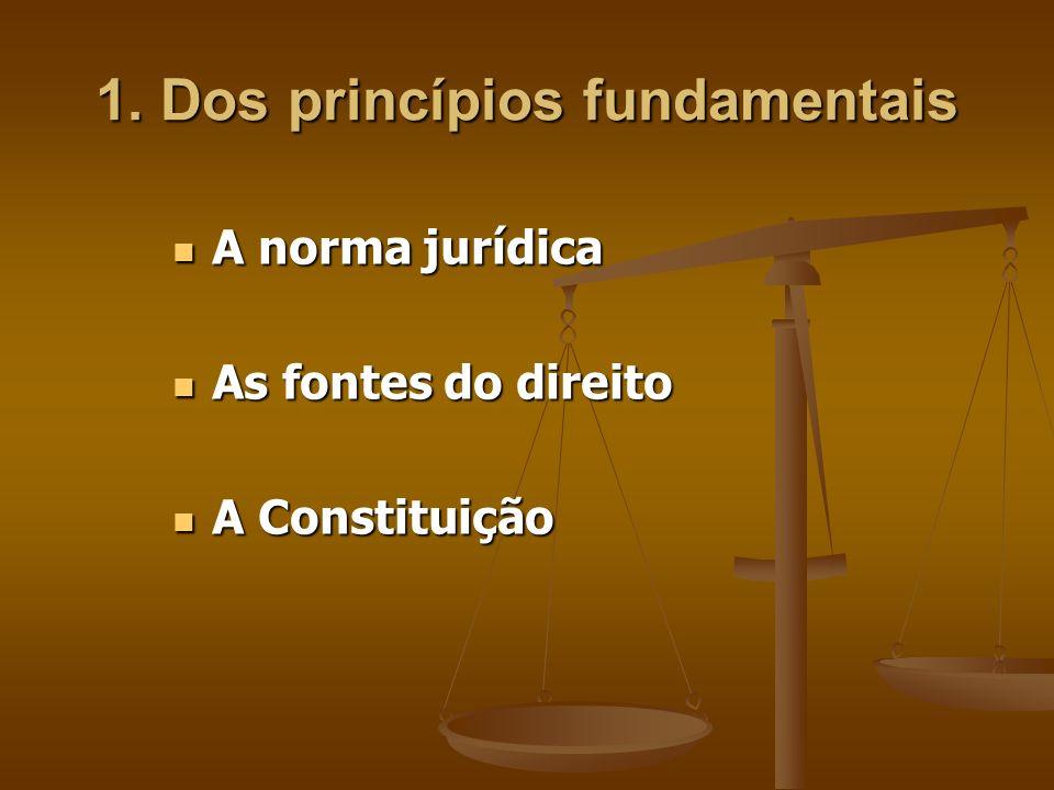 1. Dos princípios fundamentais A norma jurídica A norma jurídica As fontes do direito As fontes do direito A Constituição A Constituição