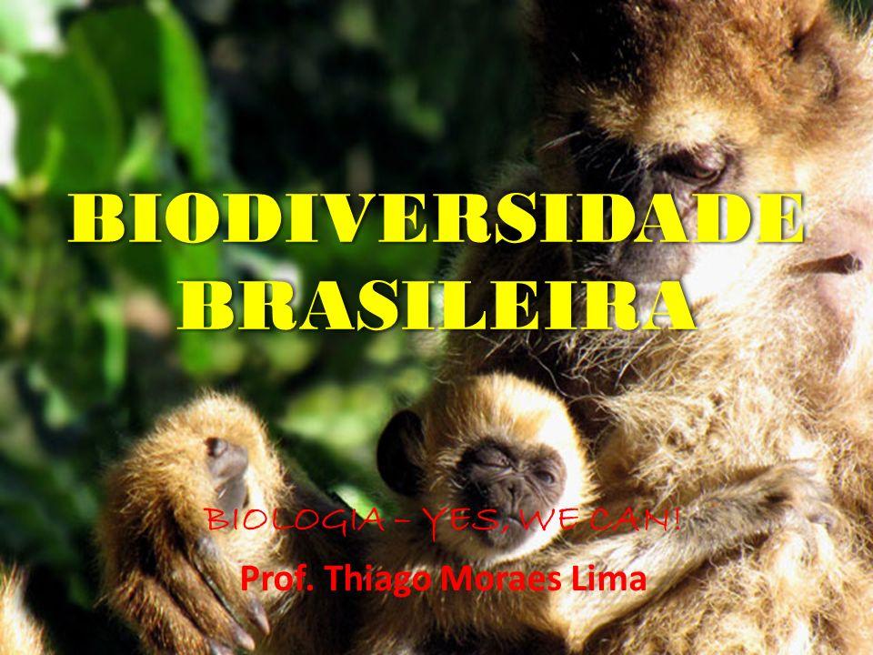 BIODIVERSIDADE BRASILEIRA BIOLOGIA – YES, WE CAN! Prof. Thiago Moraes Lima