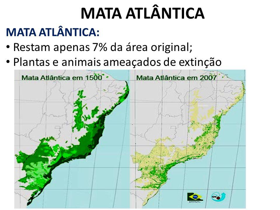 MATA ATLÂNTICA MATA ATLÂNTICA: Restam apenas 7% da área original; Plantas e animais ameaçados de extinção