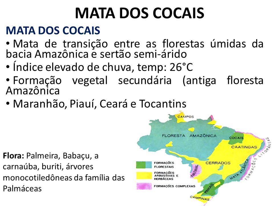 MATA DOS COCAIS Mata de transição entre as florestas úmidas da bacia Amazônica e sertão semi-árido Índice elevado de chuva, temp: 26°C Formação vegeta