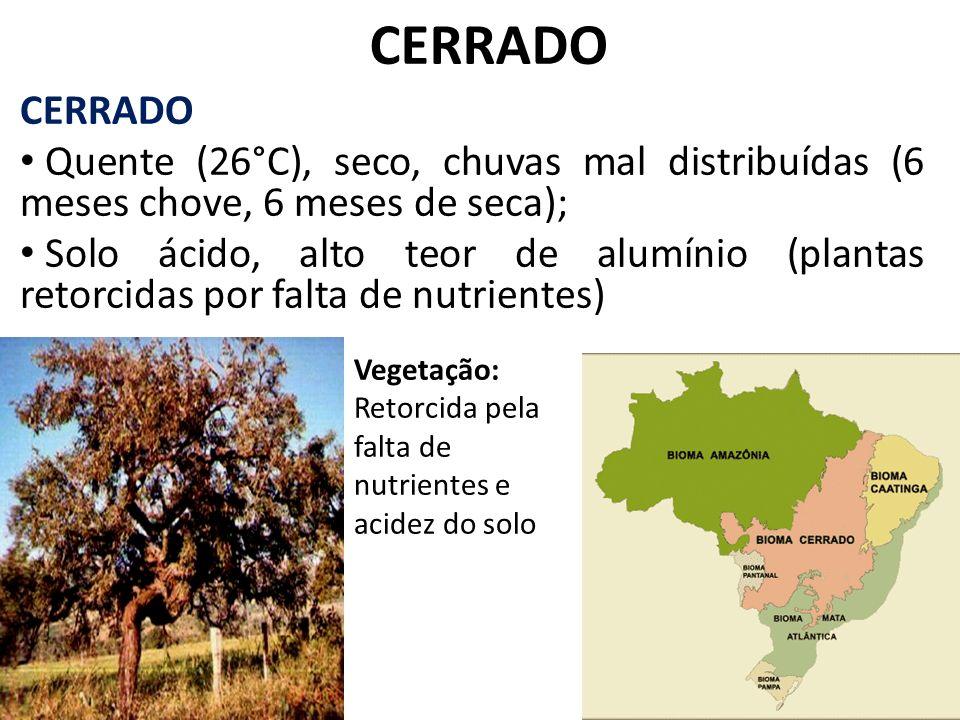 CERRADO Quente (26°C), seco, chuvas mal distribuídas (6 meses chove, 6 meses de seca); Solo ácido, alto teor de alumínio (plantas retorcidas por falta