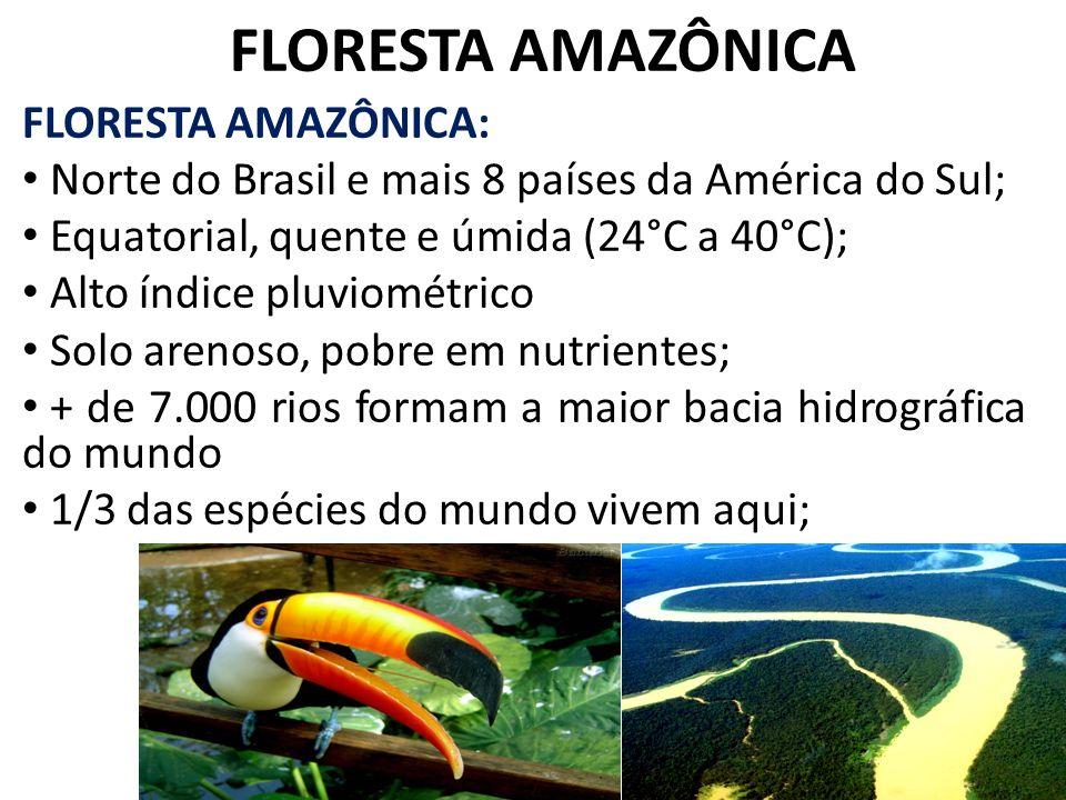 FLORESTA AMAZÔNICA FLORESTA AMAZÔNICA: Norte do Brasil e mais 8 países da América do Sul; Equatorial, quente e úmida (24°C a 40°C); Alto índice pluvio