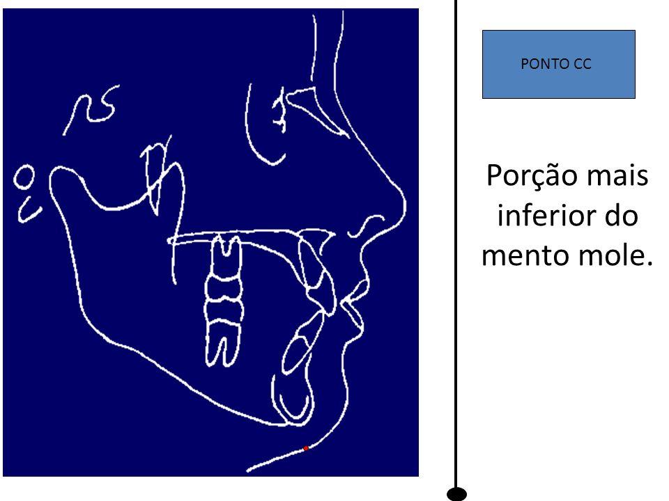 PONTO CC Porção mais inferior do mento mole.