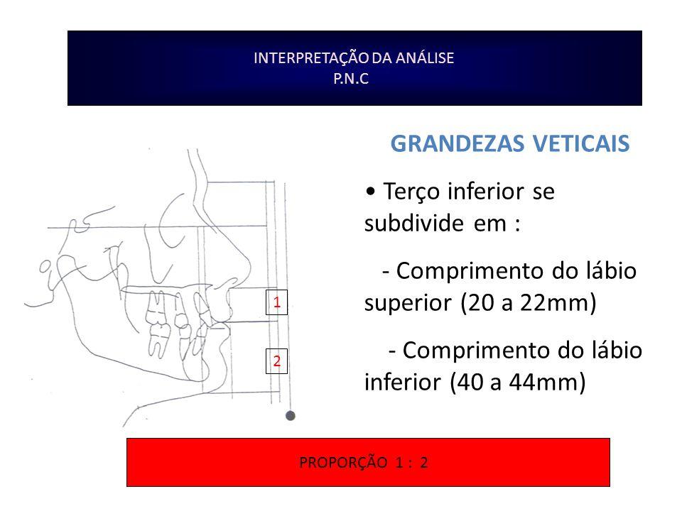 INTERPRETAÇÃO DA ANÁLISE P.N.C GRANDEZAS VETICAIS Terço inferior se subdivide em : - Comprimento do lábio superior (20 a 22mm) - Comprimento do lábio