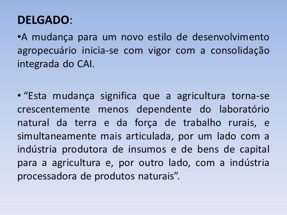 DELGADO: A mudança para um novo estilo de desenvolvimento agropecuário inicia-se com vigor com a consolidação integrada do CAI. Esta mudança significa