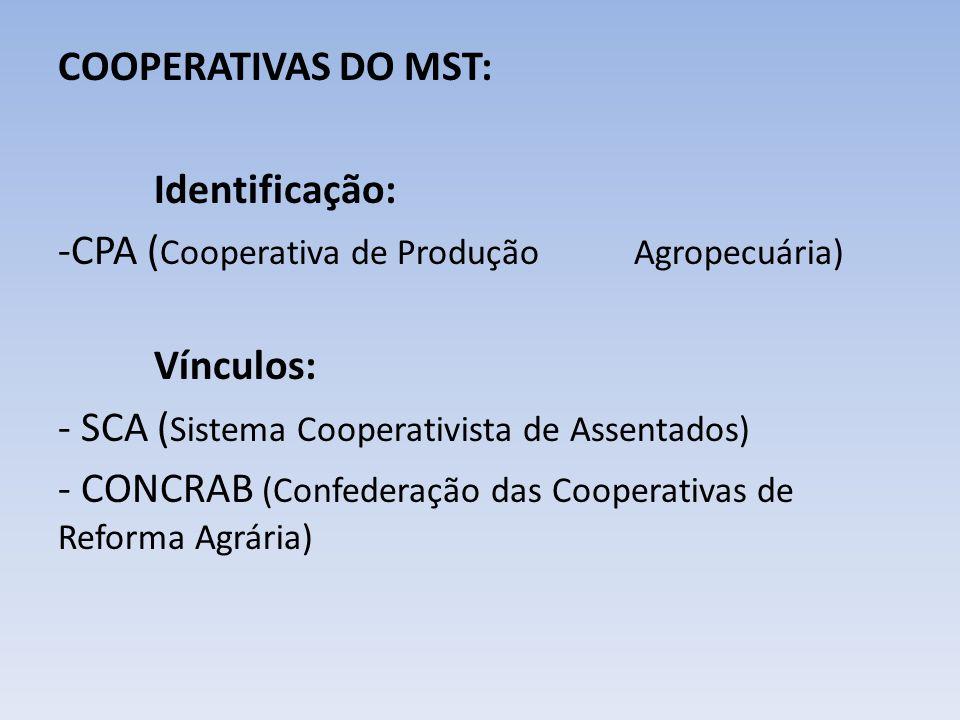 COOPERATIVAS DO MST: Identificação: -CPA ( Cooperativa de Produção Agropecuária) Vínculos: - SCA ( Sistema Cooperativista de Assentados) - CONCRAB (Co