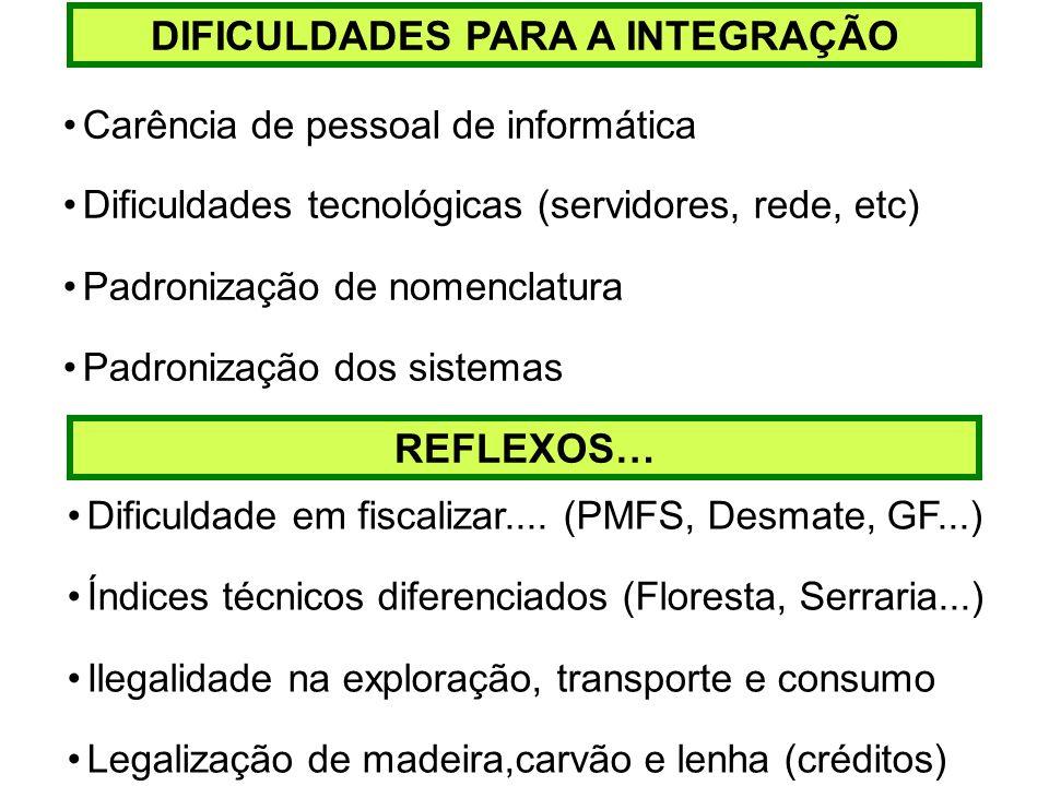 DIFICULDADES PARA A INTEGRAÇÃO Carência de pessoal de informática Dificuldades tecnológicas (servidores, rede, etc) Padronização de nomenclatura Padro