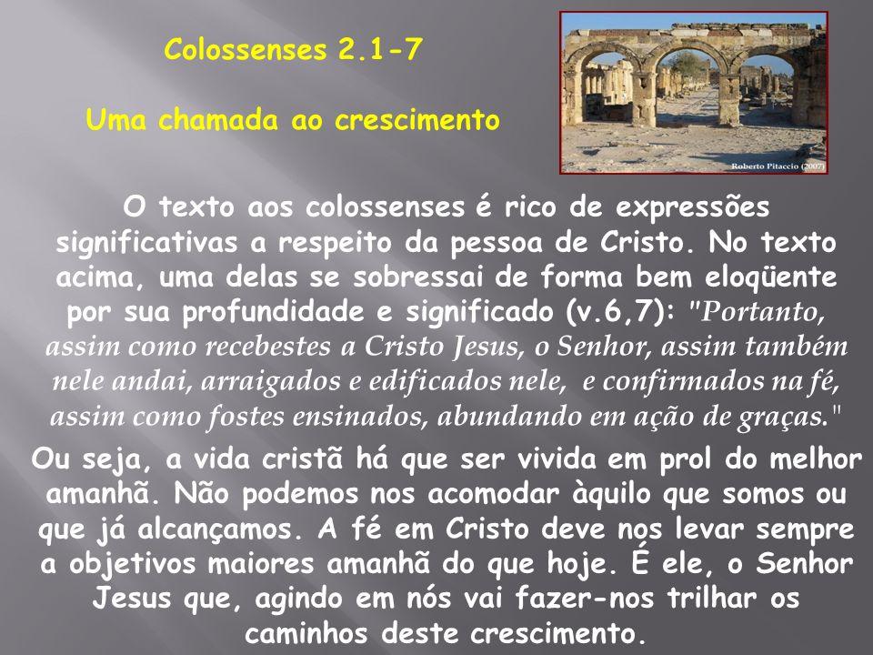 O texto aos colossenses é rico de expressões significativas a respeito da pessoa de Cristo. No texto acima, uma delas se sobressai de forma bem eloqüe