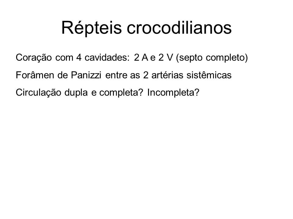 Répteis crocodilianos Coração com 4 cavidades: 2 A e 2 V (septo completo) Forâmen de Panizzi entre as 2 artérias sistêmicas Circulação dupla e complet