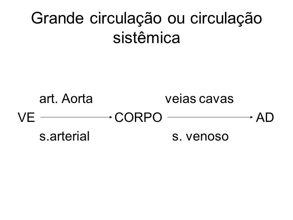 Grande circulação ou circulação sistêmica art. Aorta veias cavas VE CORPO AD s.arterial s. venoso