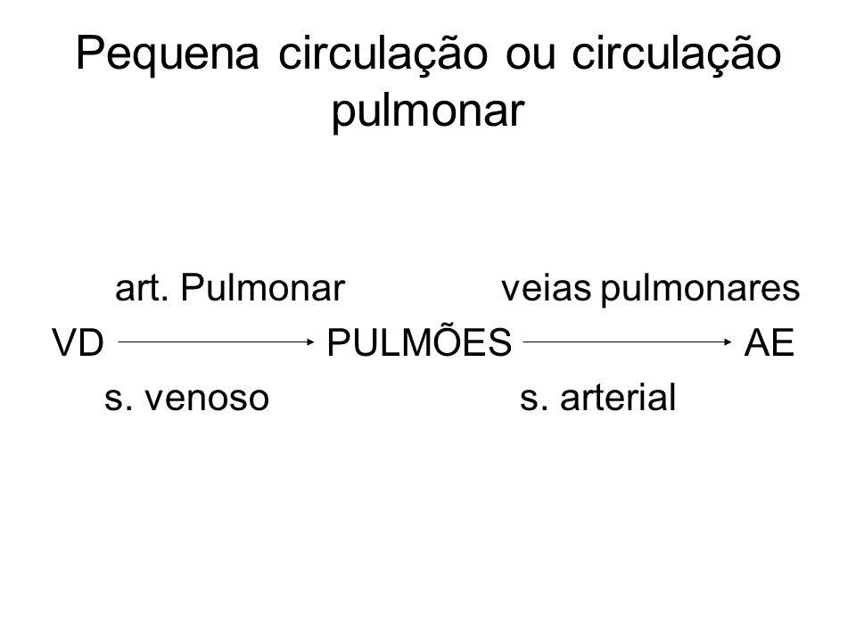 Pequena circulação ou circulação pulmonar art. Pulmonar veias pulmonares VD PULMÕES AE s. venoso s. arterial