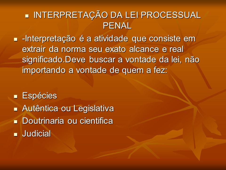 INTERPRETAÇÃO DA LEI PROCESSUAL PENAL INTERPRETAÇÃO DA LEI PROCESSUAL PENAL -Interpretação é a atividade que consiste em extrair da norma seu exato al