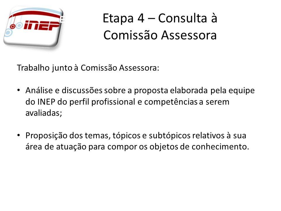 Trabalho junto à Comissão Assessora: Análise e discussões sobre a proposta elaborada pela equipe do INEP do perfil profissional e competências a serem