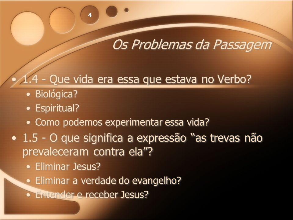 4 Os Problemas da Passagem 1.4 - Que vida era essa que estava no Verbo? Biológica? Espiritual? Como podemos experimentar essa vida? 1.5 - O que signif