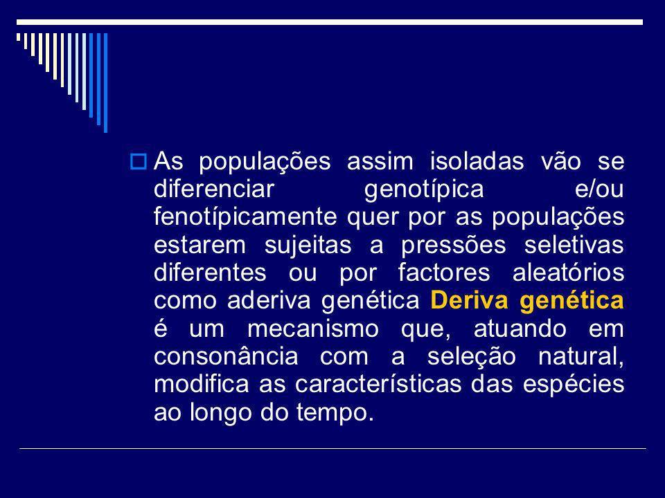 As populações assim isoladas vão se diferenciar genotípica e/ou fenotípicamente quer por as populações estarem sujeitas a pressões seletivas diferente