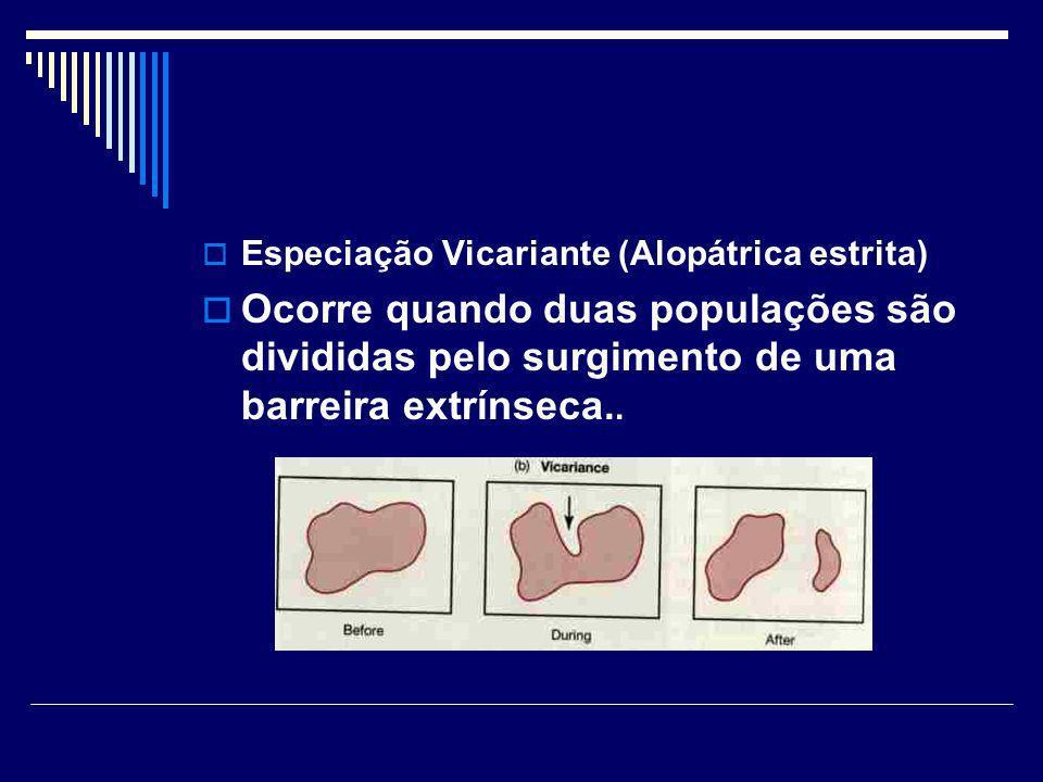 Especiação Vicariante (Alopátrica estrita) Ocorre quando duas populações são divididas pelo surgimento de uma barreira extrínseca..