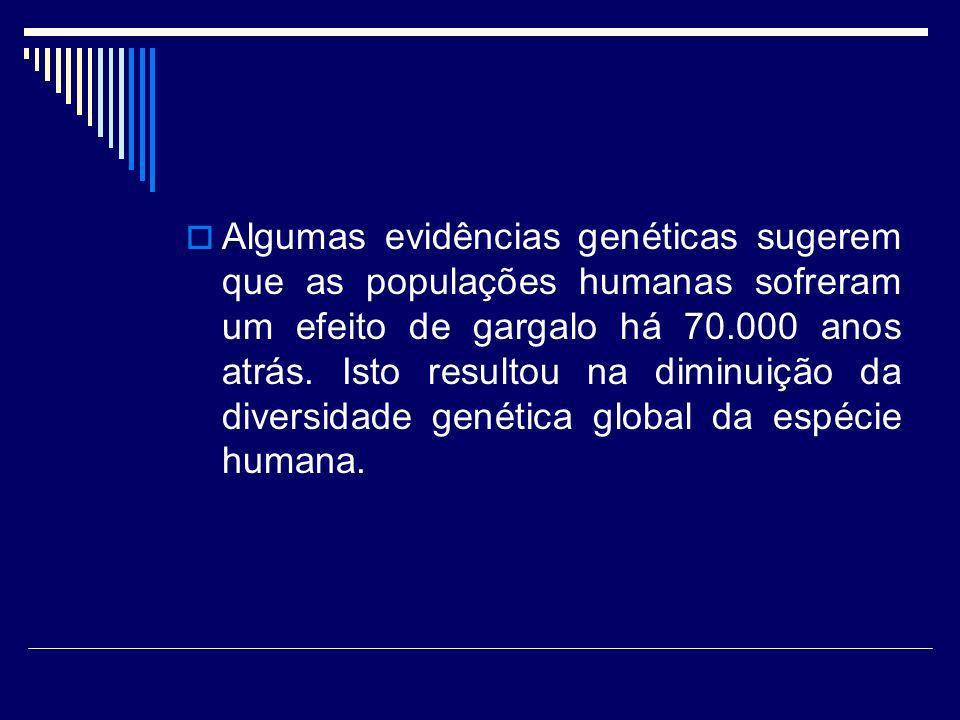 Algumas evidências genéticas sugerem que as populações humanas sofreram um efeito de gargalo há 70.000 anos atrás. Isto resultou na diminuição da dive