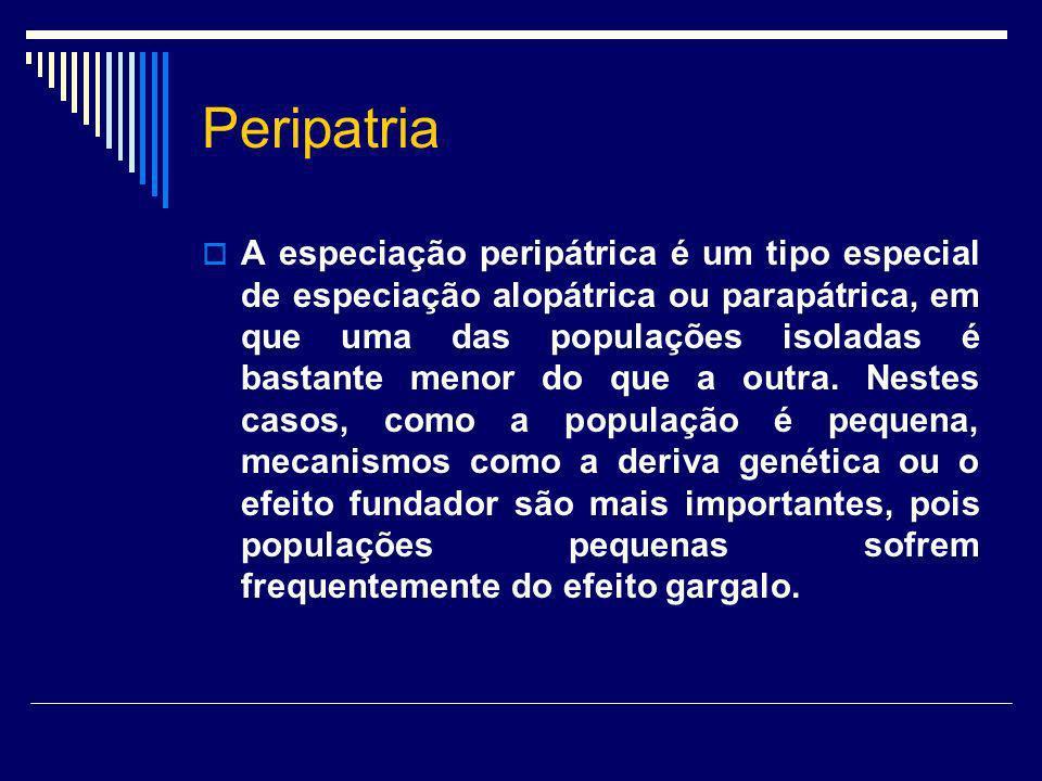 Peripatria A especiação peripátrica é um tipo especial de especiação alopátrica ou parapátrica, em que uma das populações isoladas é bastante menor do