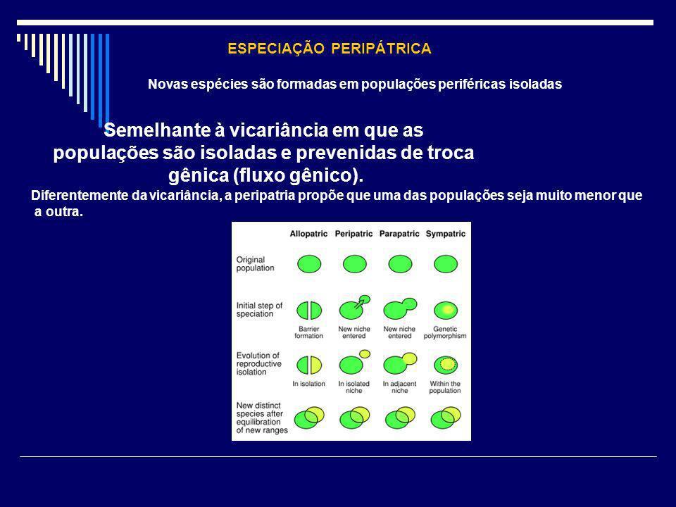 ESPECIAÇÃO PERIPÁTRICA Novas espécies são formadas em populações periféricas isoladas Semelhante à vicariância em que as populações são isoladas e pre