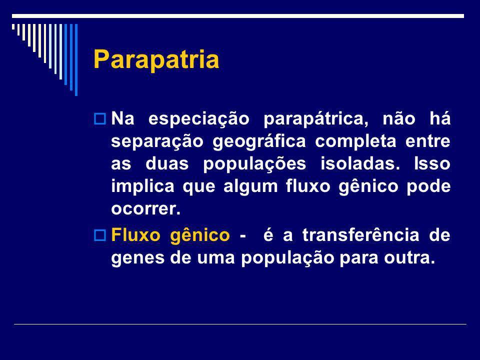 Parapatria Na especiação parapátrica, não há separação geográfica completa entre as duas populações isoladas. Isso implica que algum fluxo gênico pode
