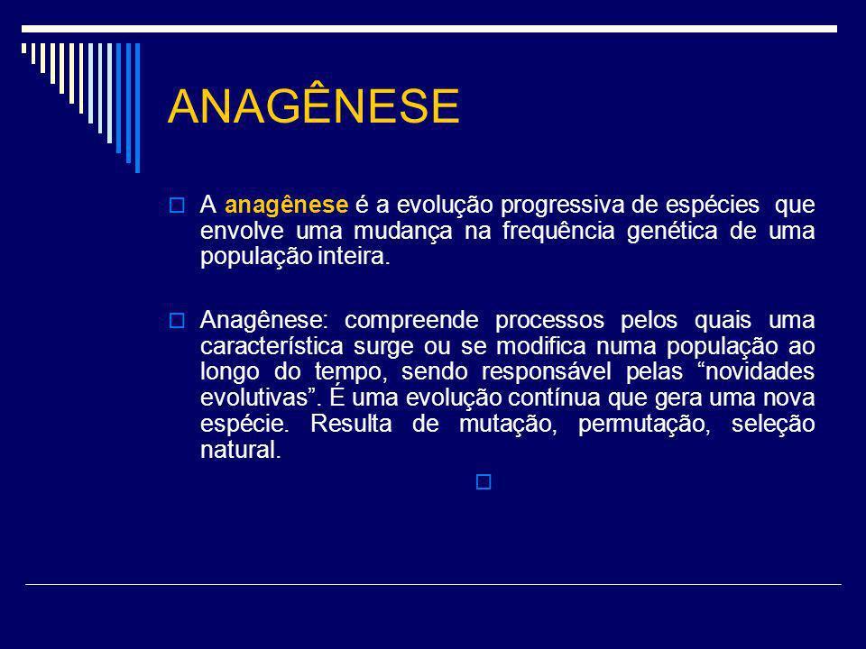 ANAGÊNESE A anagênese é a evolução progressiva de espécies que envolve uma mudança na frequência genética de uma população inteira. Anagênese: compree