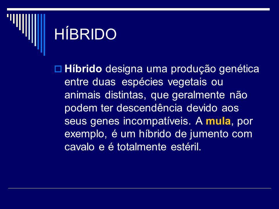 HÍBRIDO Híbrido designa uma produção genética entre duas espécies vegetais ou animais distintas, que geralmente não podem ter descendência devido aos