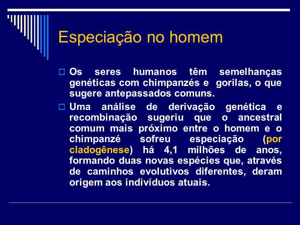Especiação no homem Os seres humanos têm semelhanças genéticas com chimpanzés e gorilas, o que sugere antepassados comuns. Uma análise de derivação ge