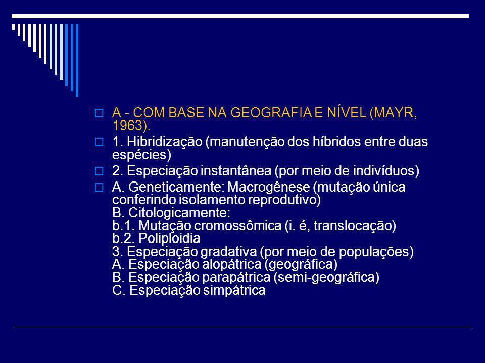 A - COM BASE NA GEOGRAFIA E NÍVEL (MAYR, 1963). 1. Hibridização (manutenção dos híbridos entre duas espécies) 2. Especiação instantânea (por meio de i