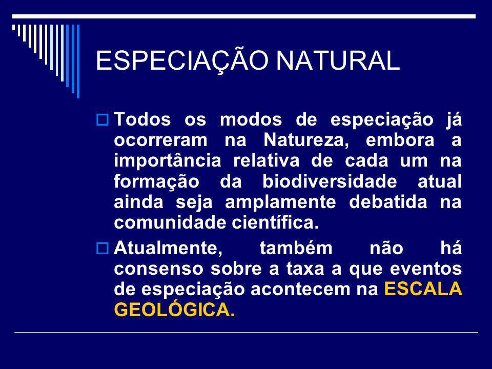 ESPECIAÇÃO NATURAL Todos os modos de especiação já ocorreram na Natureza, embora a importância relativa de cada um na formação da biodiversidade atual