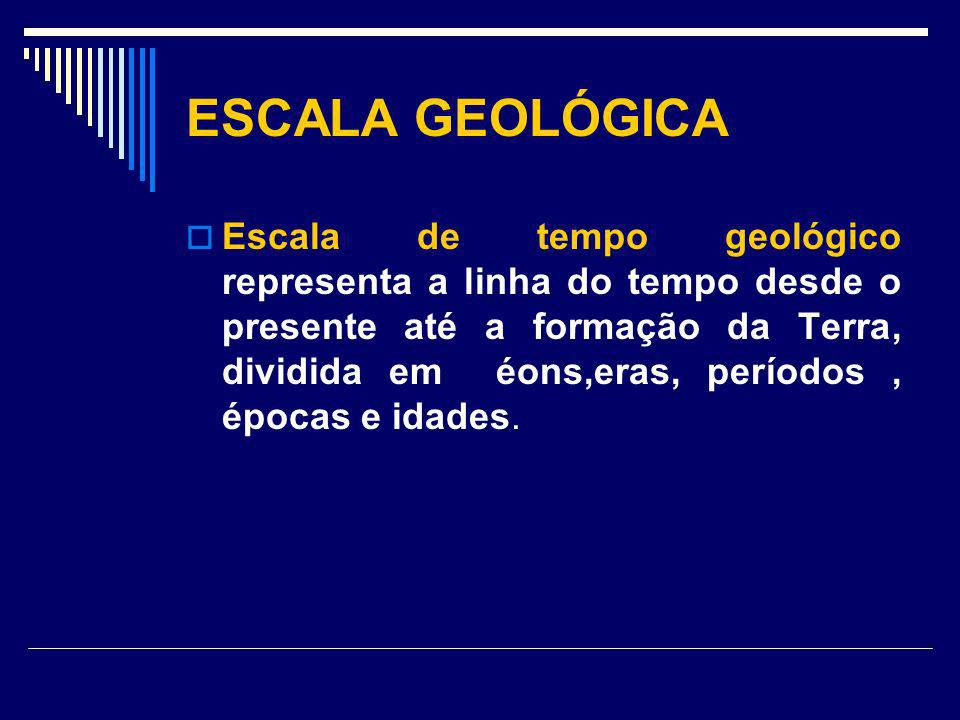 ESCALA GEOLÓGICA Escala de tempo geológico representa a linha do tempo desde o presente até a formação da Terra, dividida em éons,eras, períodos, époc