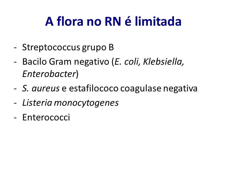 A flora no RN é limitada -Streptococcus grupo B -Bacilo Gram negativo (E. coli, Klebsiella, Enterobacter) -S. aureus e estafilococo coagulase negativa