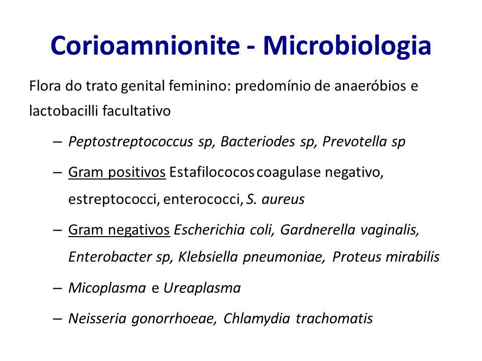 Corioamnionite - Microbiologia MICRORGANISMO% ISOLADA Micoplasmas genitais Ureaplasma urealyticum47 -50 Mycoplasma hominis31 - 55 Anaeróbios Prevotella bivia11 - 29 Peptostreptococcus7 - 33 Fusubacterium6 -7 Gardnerella vaginalis24 Aeróbios Streptococcus do grupo B12 - 19 Enterococci5 - 11 Escherichia coli8 - 12 Outros bacilos gram negativos5 - 10