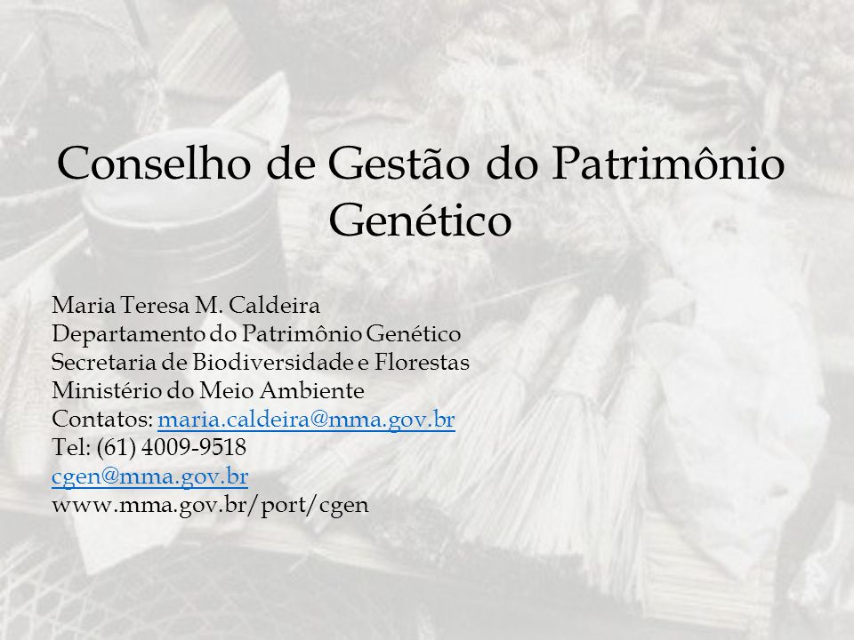 Conselho de Gestão do Patrimônio Genético Maria Teresa M. Caldeira Departamento do Patrimônio Genético Secretaria de Biodiversidade e Florestas Minist