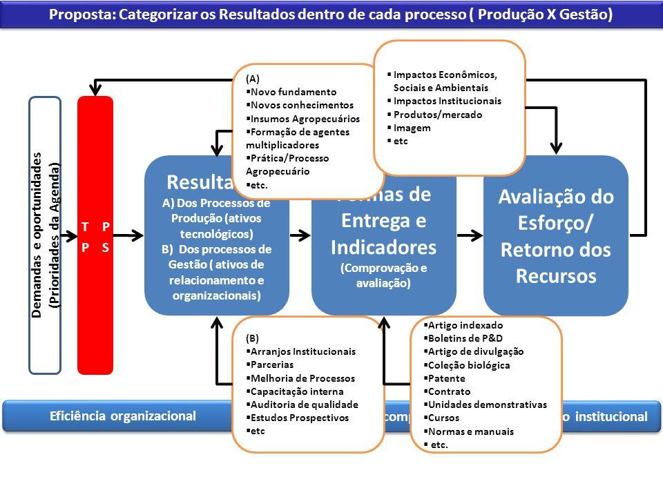 Eficiência organizacional Desenvolvimento de competências Comunicação institucional Demandas e oportunidades (Prioridades da Agenda) Proposta: Categor