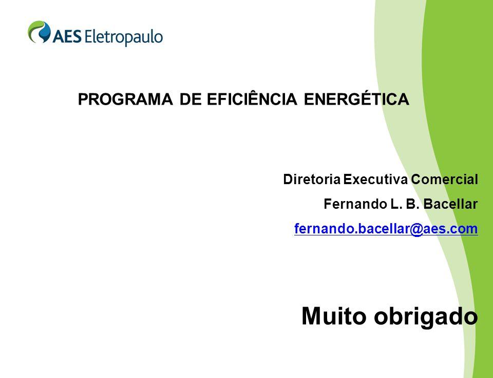 PROGRAMA DE EFICIÊNCIA ENERGÉTICA Diretoria Executiva Comercial Fernando L.