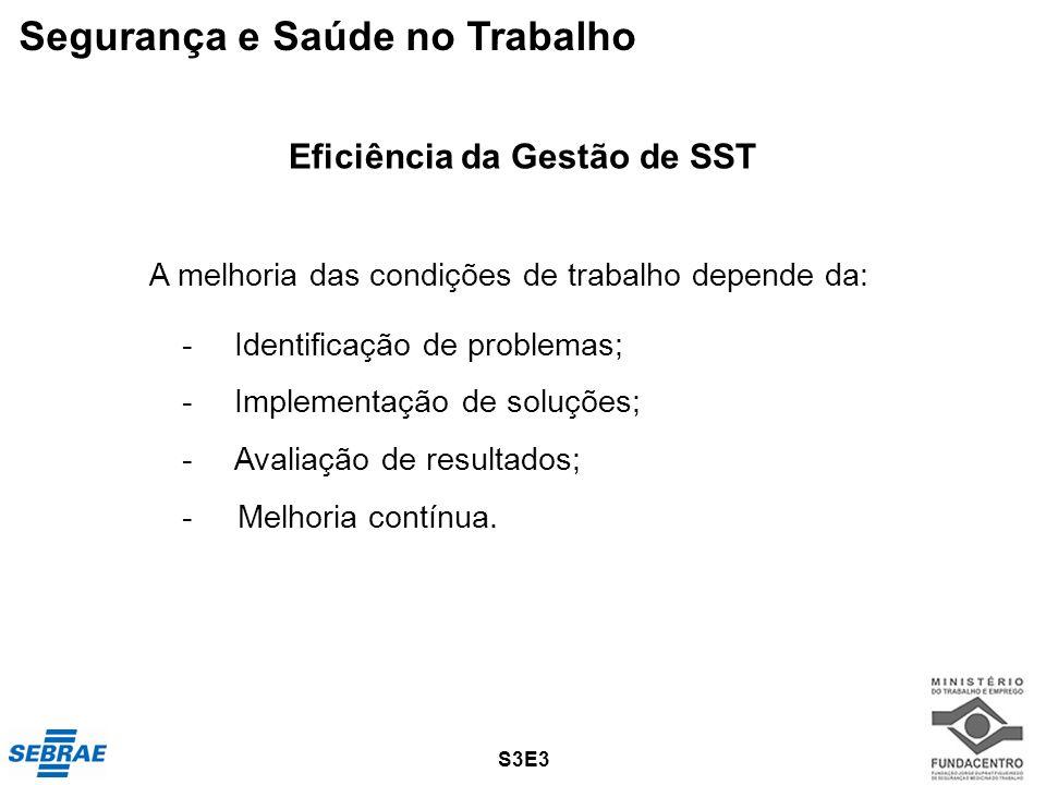 -Identificação de problemas; -Implementação de soluções; -Avaliação de resultados; - Melhoria contínua. Eficiência da Gestão de SST S3E3 Segurança e S