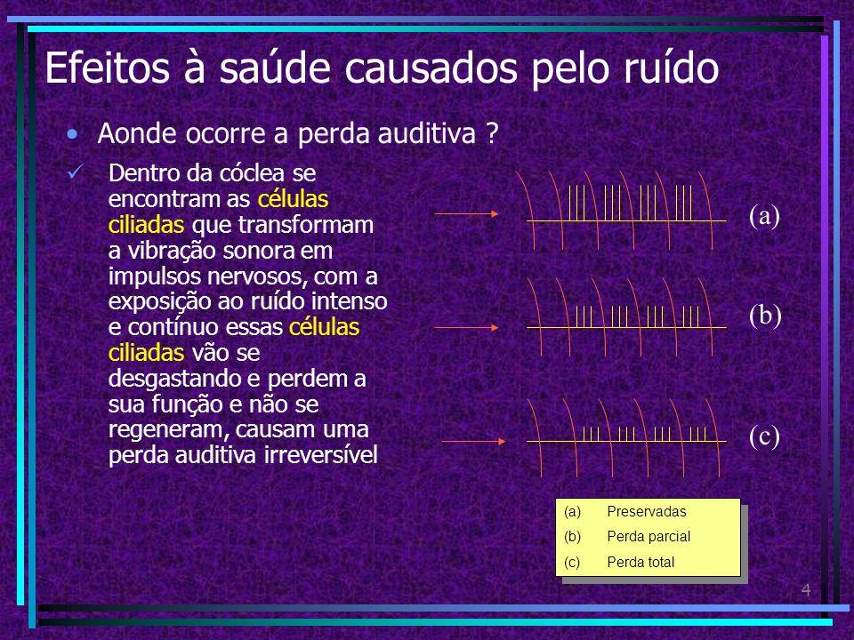 3 Efeitos à saúde causados pelo ruído Como funciona o aparelho auditivo ? (c) Ouvido interno: 1.O ouvido interno é formado pela cóclea e pelo labirint