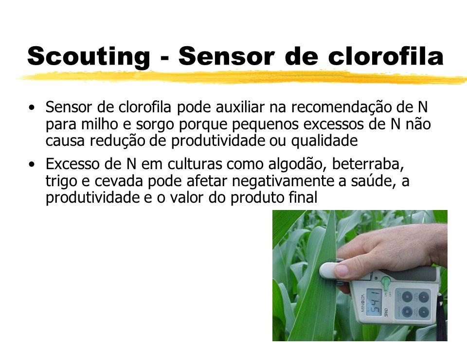 Scouting - Sensor de clorofila Sensor de clorofila pode auxiliar na recomendação de N para milho e sorgo porque pequenos excessos de N não causa reduç