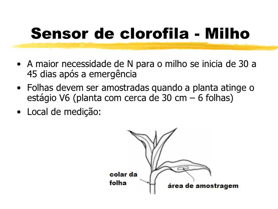 Sensor de clorofila - Milho A maior necessidade de N para o milho se inicia de 30 a 45 dias após a emergência Folhas devem ser amostradas quando a pla