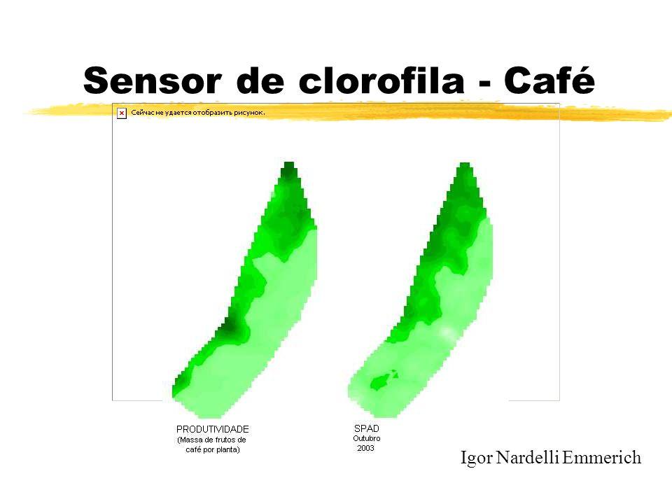 Sensor de clorofila - Café Igor Nardelli Emmerich