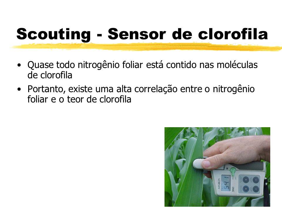 Scouting - Sensor de clorofila Quase todo nitrogênio foliar está contido nas moléculas de clorofila Portanto, existe uma alta correlação entre o nitro