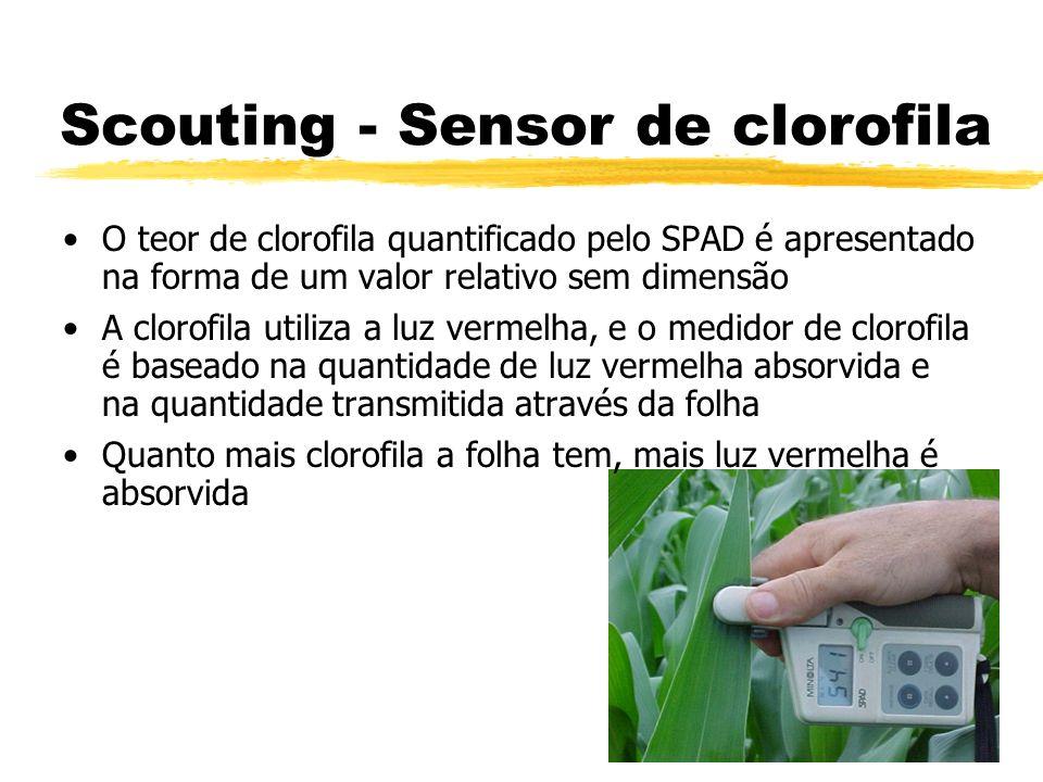 Scouting - Sensor de clorofila O teor de clorofila quantificado pelo SPAD é apresentado na forma de um valor relativo sem dimensão A clorofila utiliza