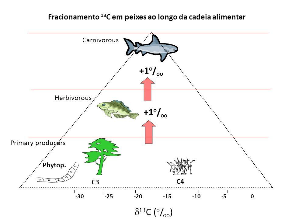Fracionamento 13 C em peixes ao longo da cadeia alimentar -30 -25-20-15-10-50 C3 C4 Phytop. Primary producers Herbivorous Carnivorous +1 o / oo 13 C (