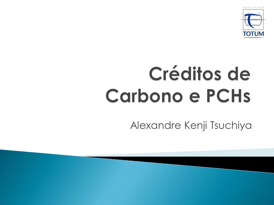 Fundado em 2003, o Instituto Totum conta com profissionais com grande experiência e altamente qualificados em projetos de créditos de carbono.