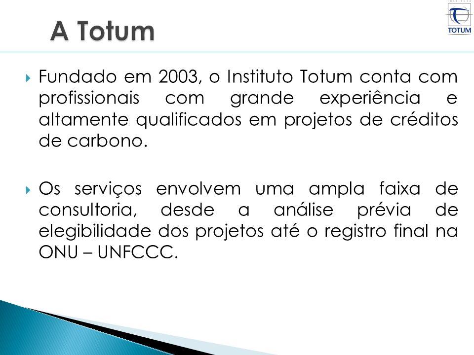 Fundado em 2003, o Instituto Totum conta com profissionais com grande experiência e altamente qualificados em projetos de créditos de carbono. Os serv