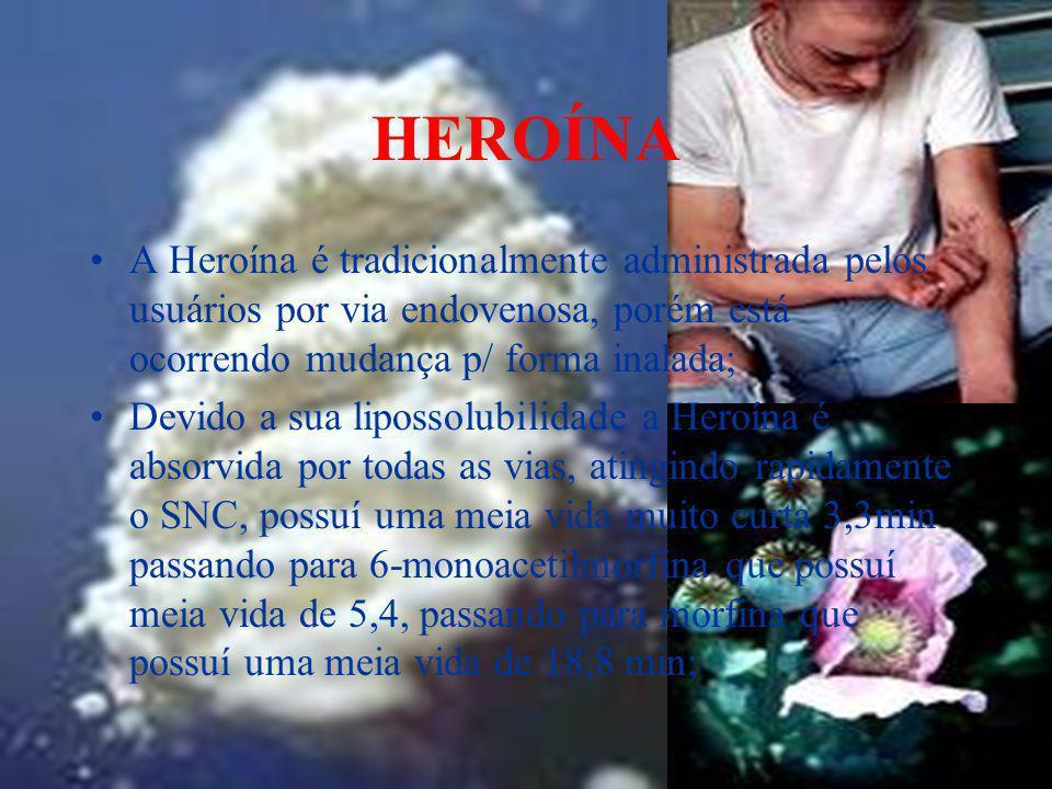 HEROÍNA A Heroína é tradicionalmente administrada pelos usuários por via endovenosa, porém está ocorrendo mudança p/ forma inalada; Devido a sua lipos